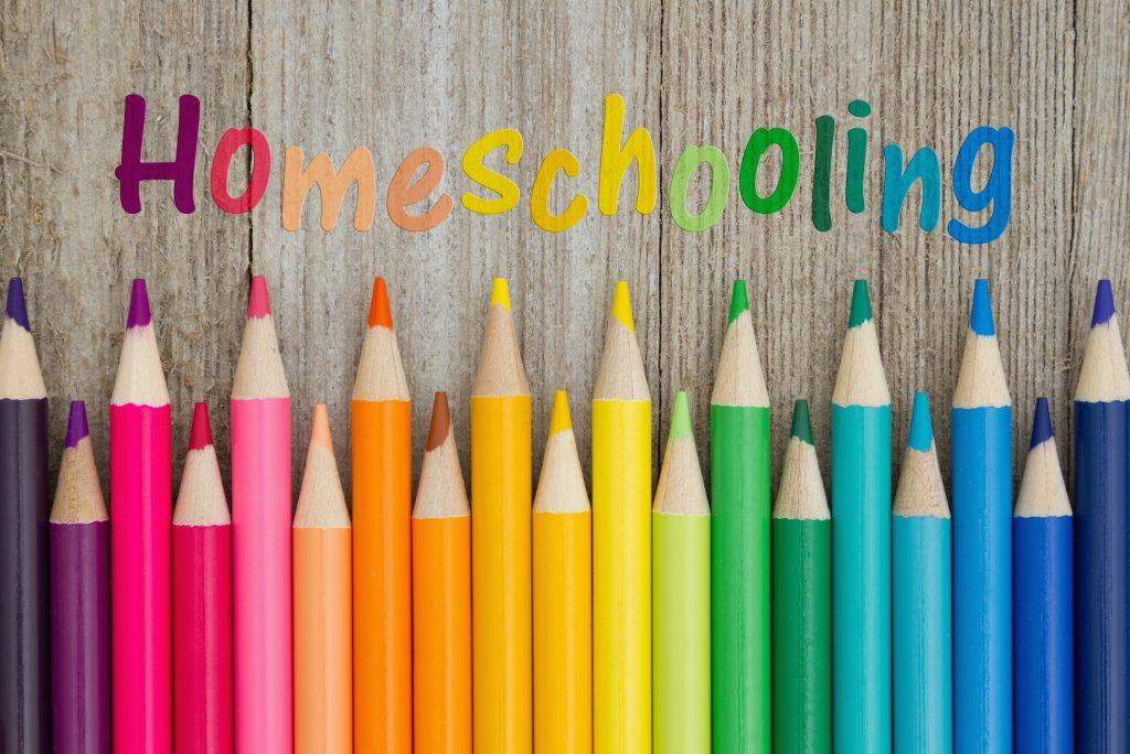 домашнее обучение особенности